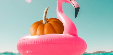 FLAMINGO_SLIDE_SITO